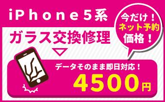 ネット予約価格キャンペーンアイコン5